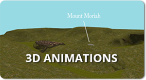 3D Animations