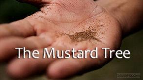 the-mustard-tree.jpg